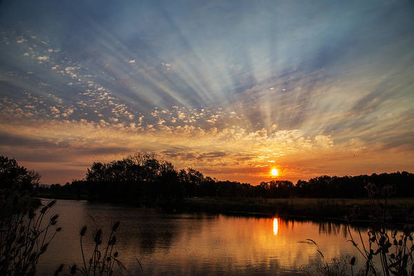 Wall Art - Photograph - Sunset Refuge by Angie Vogel