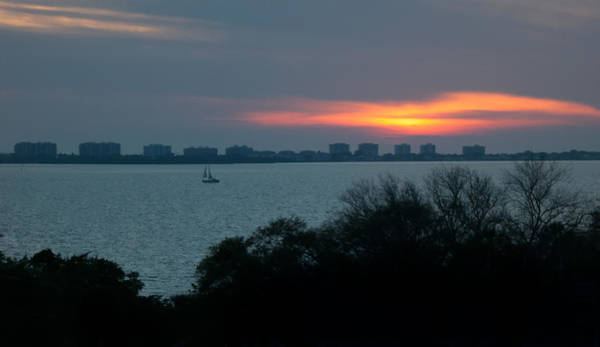 Photograph - Sunset Sail On Sarasota Bay by Richard Goldman