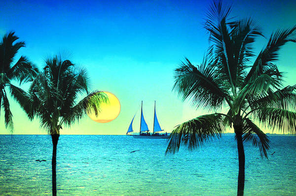 Photograph - Sunset Sailor by Bill Cannon