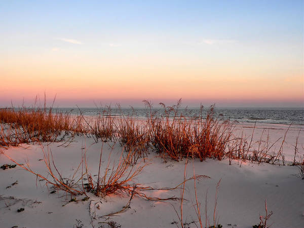 Photograph - Sunset Sea Oats  by Kathy K McClellan