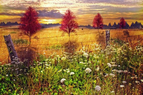 Photograph - Sunset Shadows by Debra and Dave Vanderlaan
