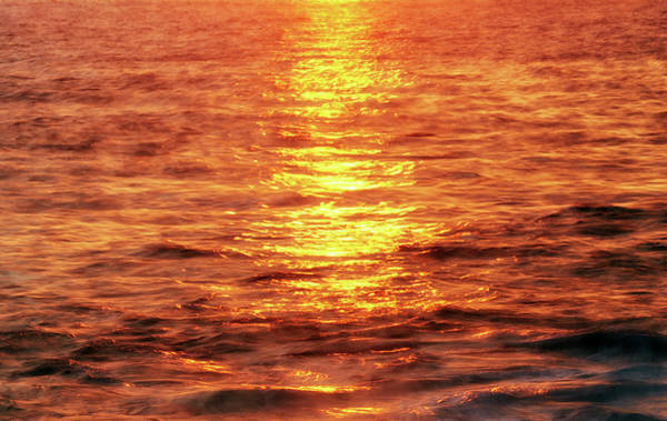 Photograph - Sunset Shimmer by Christopher Johnson