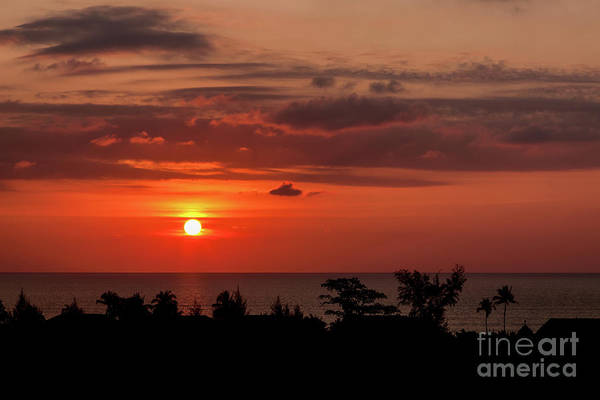 Photograph - Sunset Silhouette by Adrian Evans