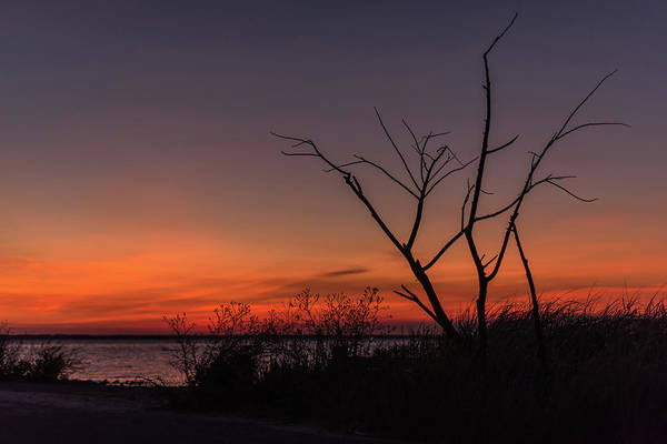 Photograph - Sunset Silhouette Lavalette Nj by Terry DeLuco