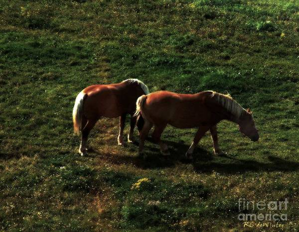 Painting - Sunset Snack by RC DeWinter