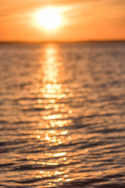 Photograph - Sunset Sparkles by Terry DeLuco