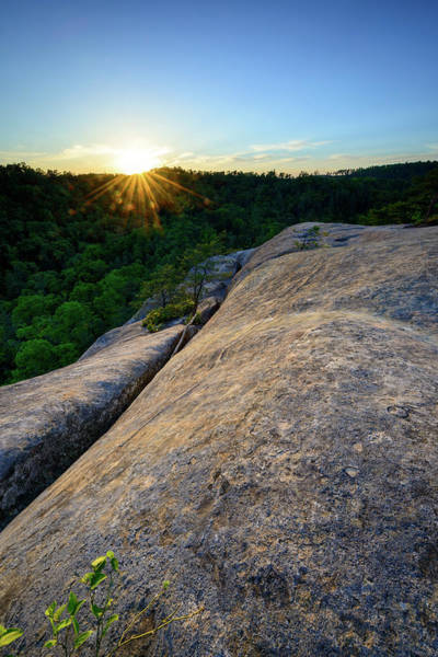 Photograph - Sunset Splitter by Michael Scott