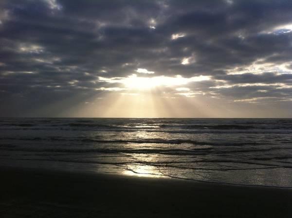 Photograph - Sunrise Spotlight  by Christy Pooschke
