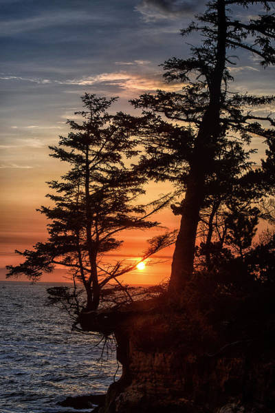 Photograph - Sunset Through The Trees by John Kiss