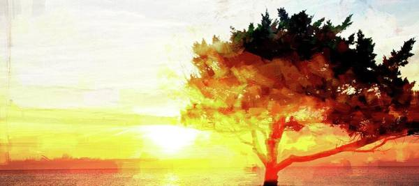 Photograph - Sunset Tree by Alice Gipson
