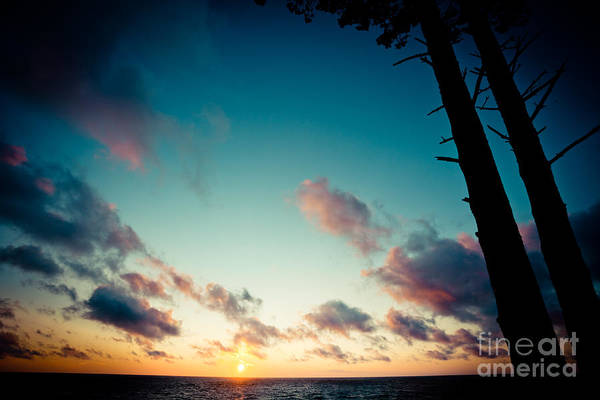 Photograph - Sunset Under Sea With Tree Jurkalne by Raimond Klavins