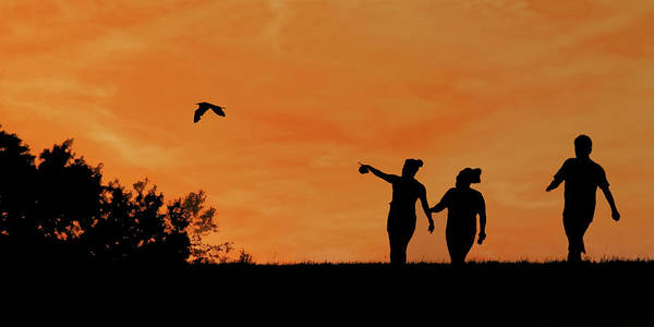 Wall Art - Photograph - Sunset Walk With Friends by Nikolyn McDonald