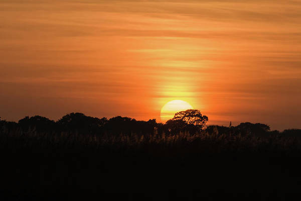 Photograph - Sunset  by Wendy Cooper