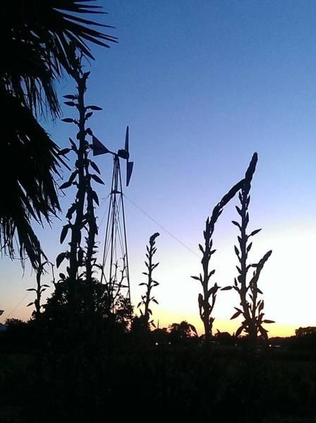 Wall Art - Photograph - Sunset Windmill by Nick Blake