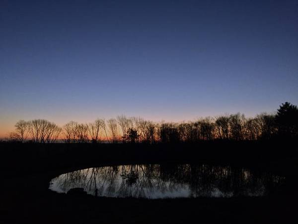 Wall Art - Photograph - Sunset With Treeline Being Mirrored By A Pond by Alexa DeAndrade