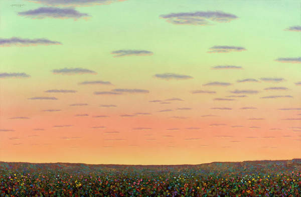 Painting - Sunset With Wildflowers by James W Johnson