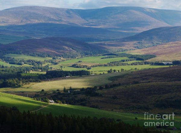 Photograph - Sunshine And Shadow - Braes Of Glenlivet by Phil Banks