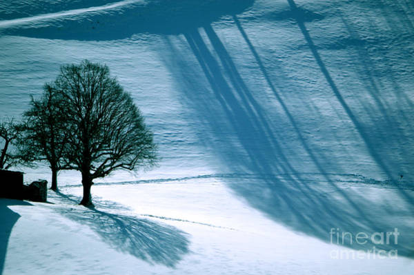 Photograph - Sunshine And Shadows - Winterwonderland by Susanne Van Hulst
