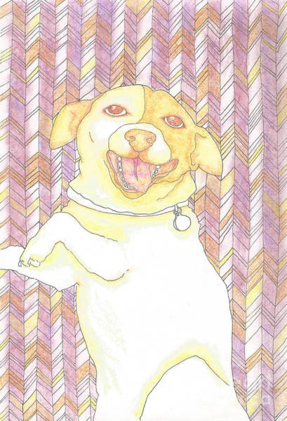 Furry Drawing - Sunshine Jack Russell by Barbara  Campbell