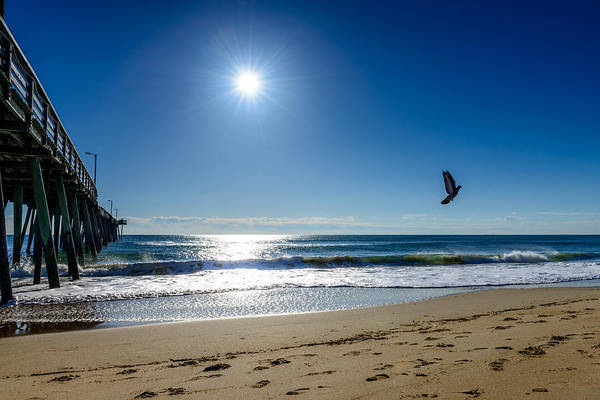 Photograph - Sunshine In The Morning by Michael Scott