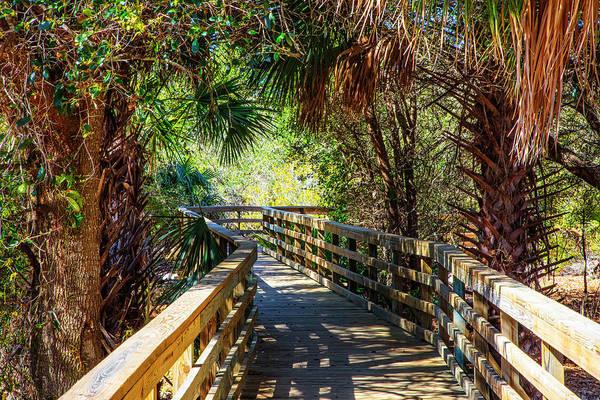 Photograph - Sunshine On The Boardwalks by Debra and Dave Vanderlaan