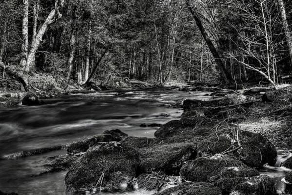 Photograph - Sunshine On The Prairie River by Dale Kauzlaric