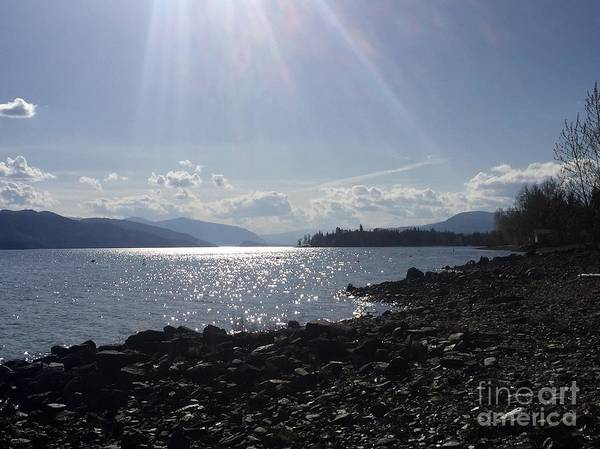 Photograph - Sunshine On The Water by Victor K