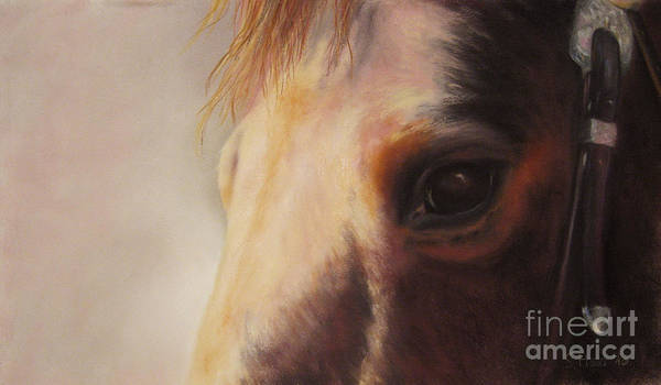 Horsemanship Painting - Sunshine Queenie II by Sabina Haas