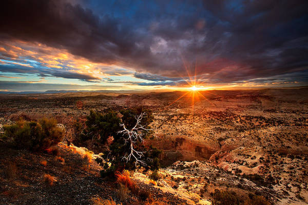 Plateau Wall Art - Photograph - Sunstar Over The Escalante by Dan Holmes