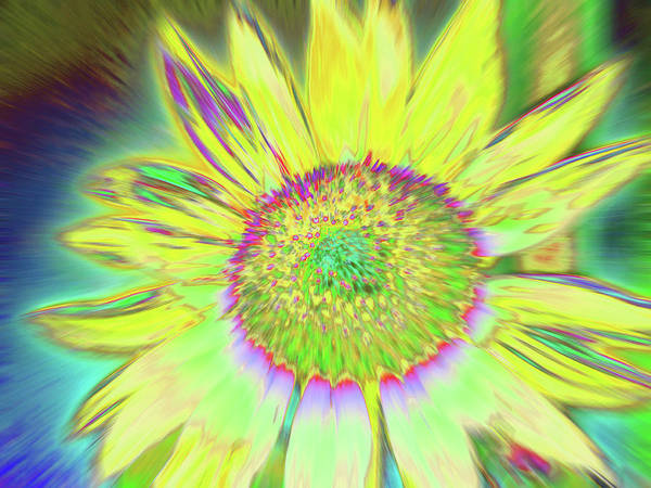 Photograph - Sunswash by Cris Fulton