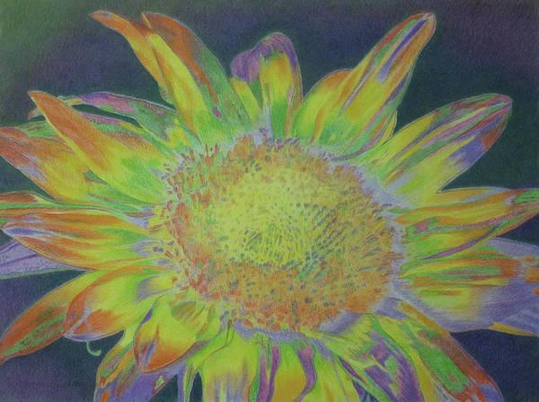Pastel - Sunverve by Cris Fulton