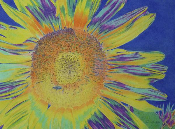 Drawing - Sunwondrous by Cris Fulton