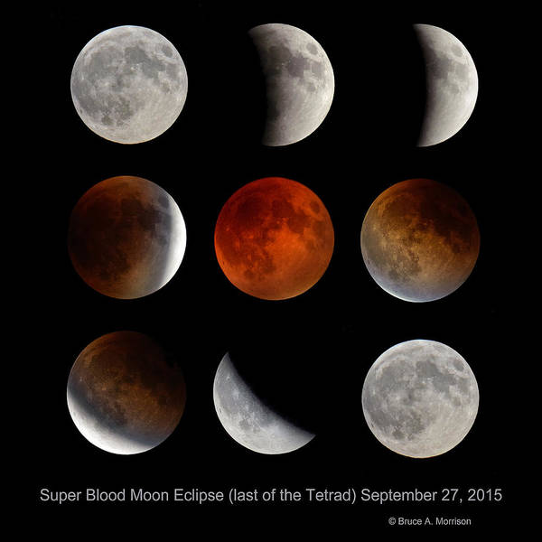 Photograph - Super Blood Moon Eclipse by Bruce Morrison