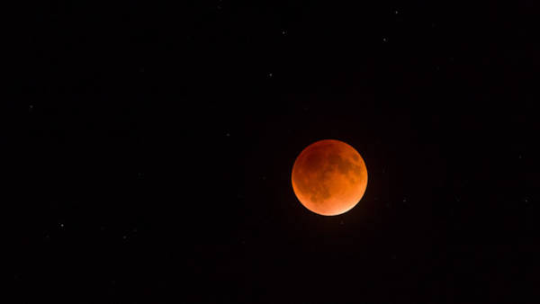 Photograph - Super Blood Moon Eclipse by Lori Coleman