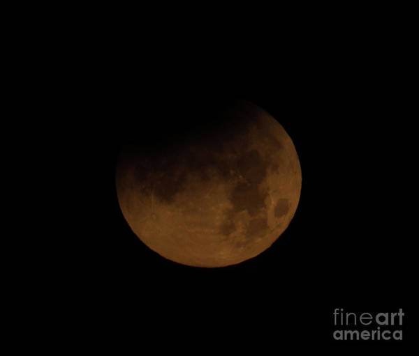 Photograph - Super Blue Blood Moon by Dale Powell