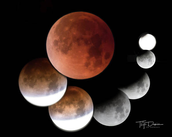 Photograph - Super Blue Blood Moon by T A Davies