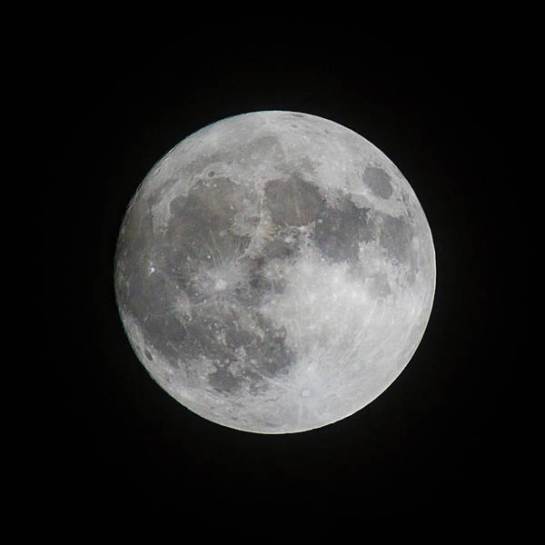 Photograph - Super Moon As Seen In Florida by Dawn Currie