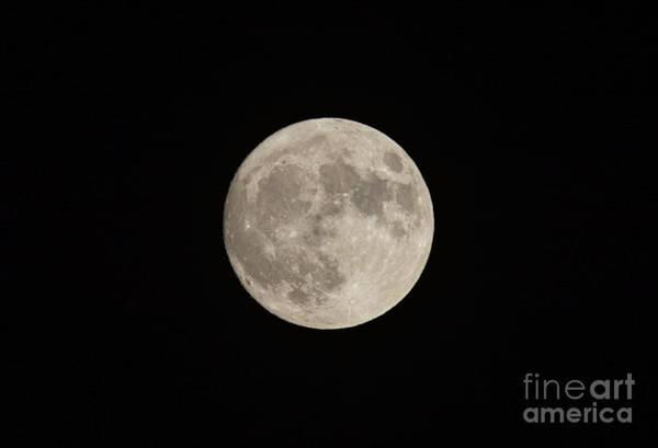 Photograph - Super Moon by Les Palenik