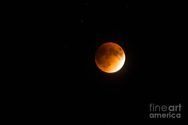 Photograph - Super Moon Lunar Eclipse by Dale Powell