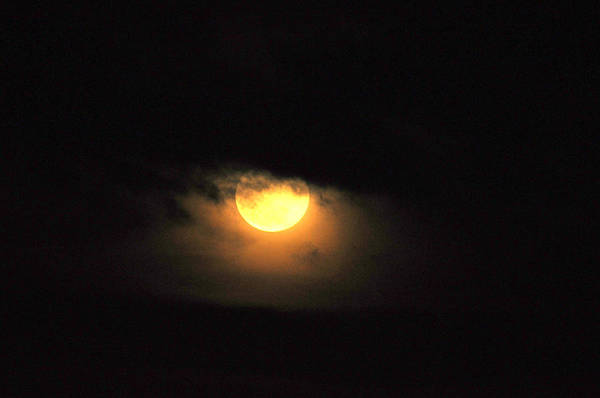 Ediz Hook Wall Art - Photograph - Super Moon by Lynn Bawden