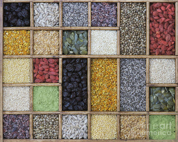 Sunflower Seeds Photograph - Superfoods by Tim Gainey