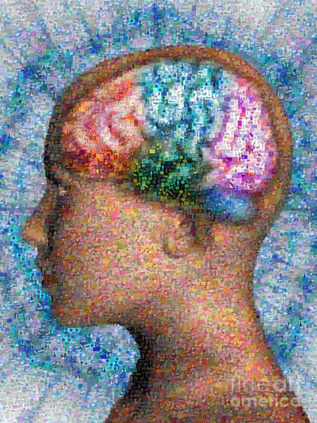 Photograph - Superimposed Brain Mosaic by Scott Camazine AndreaMosaic