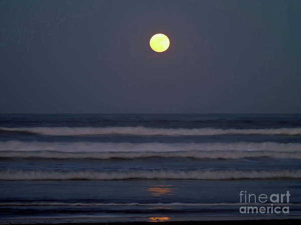 Photograph - Supermoon Above The Waves by D Hackett