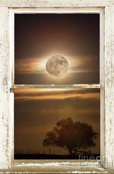 Wall Art - Photograph - Supermoon Country Tree Rustic Window View by James BO Insogna