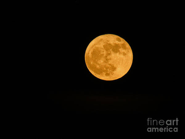 Photograph - Supermoon Dec3rd by Robert Knight