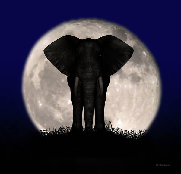 Sfx Photograph - Supermoon Elephant Silhouette by Brian Wallace