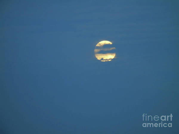 Photograph - Supermoon Hide And Seek by D Hackett