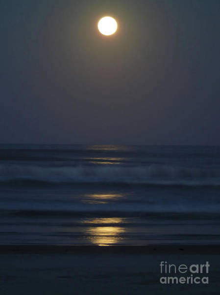 Photograph - Supermoon Shines On The Atlantic by D Hackett