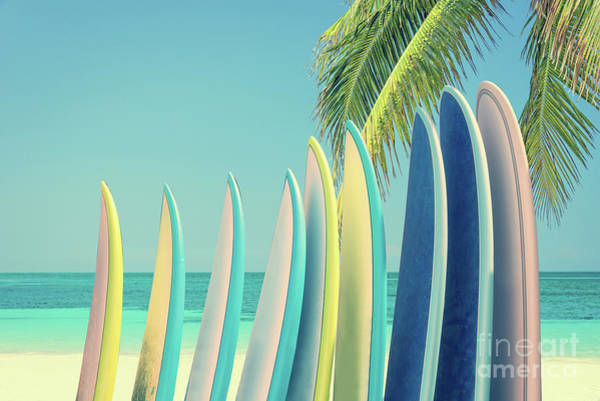 Longboard Photograph - Surfboards by Delphimages Photo Creations