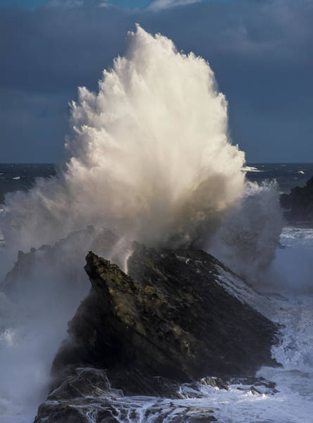 Photograph - Surf Eruption by Robert Potts